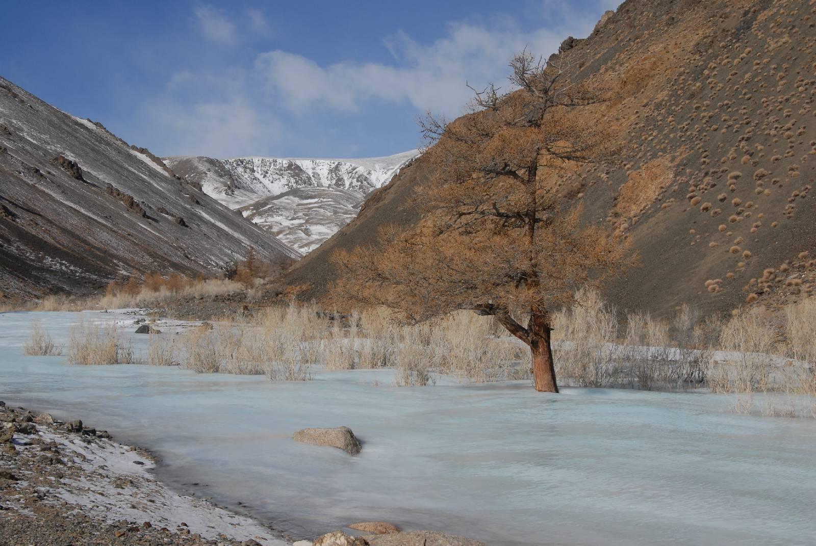 Parco nazionale Siilkhem, in Mongolia (Monti Altai): habitat del leopardo delle nevi
