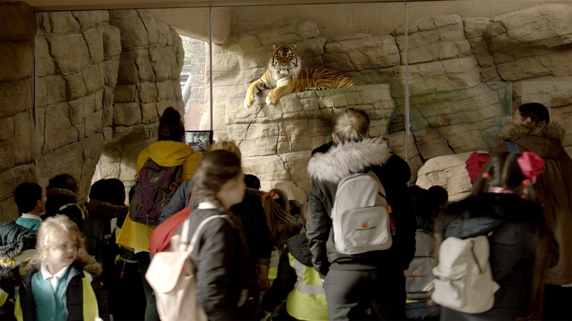 27_Film Still_London Zoo
